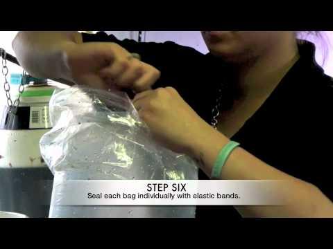 How To Bag A Koi