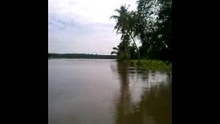 Mancing mania sungai ogan komering ilir sumatera s
