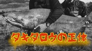 伝説の巨大魚「タキタロウ」の正体とは… 新定説! 山形県の未確認生物 ツリアメ UMAシリーズ