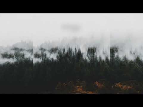 Andrew Rothschild - Transitions [Full Album]