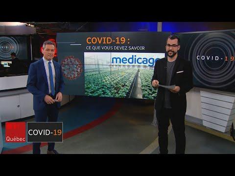 Vaccin, chloroquine et colchicine: la course au traitement contre le coronavirus