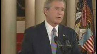 Classic Bush - What Mistakes?