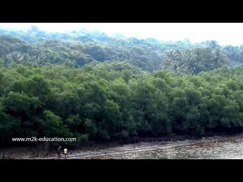 Traveling in Konkan