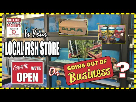 Is Your Local Fish Store Open Or Closed?