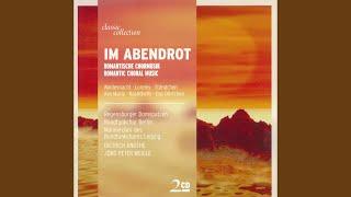 14 Deutsche Volkslieder, Book 1, WoO 34: No. 5. Taublein weiss