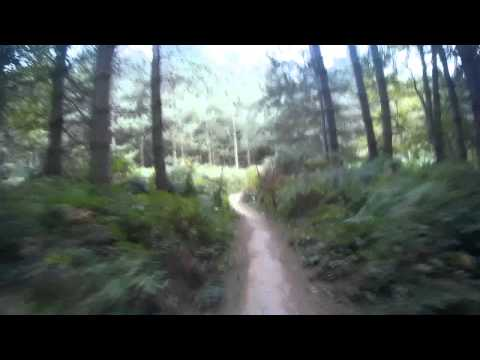 sherwood pines red route
