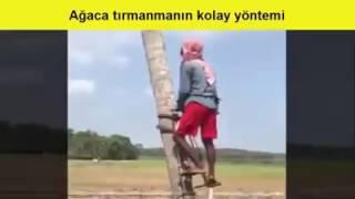 Ağaca Tırmanmanın Çok Kolay Yolu