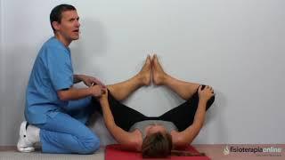 Q utiliza cadera aesculus