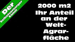 Nur 2000m2. Ihr Anteil an der Welt Anbaufläche