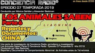 'LOS ANIMALES SABEN' - REGISTRO Y DOCUMENTOS DE CHINA - Conciencia Radio, Temp 9, Ep 6, Año 2019