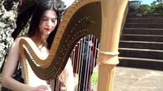 Lough Erin Shore - Celtic Music - Trio Amadeus
