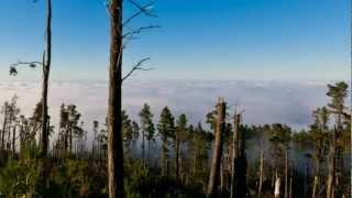 Mt Eden DnB - Chasing shadows