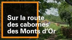 Sur la route des cabornes, Saint-Didier-au-Mont-d'Or - Grand Lyon Nature