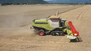 CLAAS LEXION 770 beim Einsatz der Agroprodukt Sonneberg