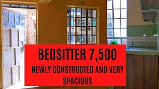 Spacious BEDSITTER || SMALL STUDIO APARTMENT TOUR || Empty apartment tour