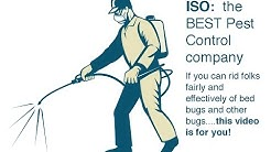 Best exterminator in Houston needed ASAP - hunter of bed bugs and other pests