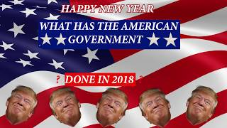 2018 TRUMP PRESIDENCY SUMMED UP TRUMP 2020 HAPPY NEW YEAR
