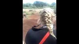 Africa Budget Tour,  Masai Mara Camping Safari