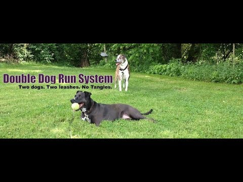 1cb78cd5b3e6 The Only Tangle-free Dog Tie Out - Large and XL - YouTube