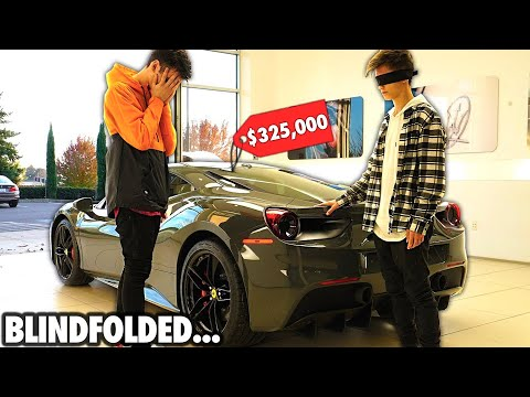 I Let My LITTLE BROTHER Buy EVERYTHING He TOUCHES... (Blindfolded)