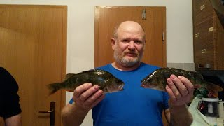 Рыбалка в Германии ловим окуня