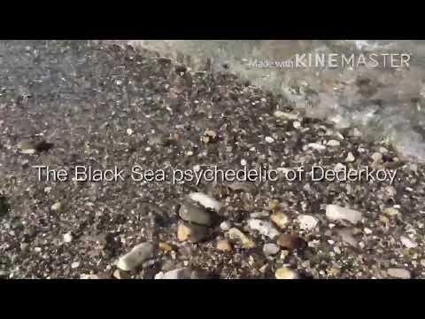 Смотреть клип Черноморская психоделика Дедеркоя онлайн бесплатно в качестве