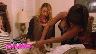 Cameron, Naomi, Jimmy Uso and Vinnie find Louis the cat: Total Divas, April 27, 2014