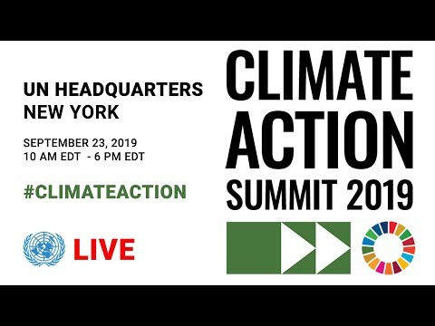 Transcript: Greta Thunberg's Speech At The U.N. Climate Action Summit