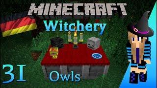 witchery owls