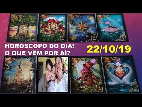Diário 22/10 com Karine Ouriques