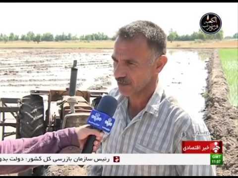 Iran Golestan province, Leveling Agriculture fields يكسان سازي سطح زمينهاي كشاورزي گلستان ايران