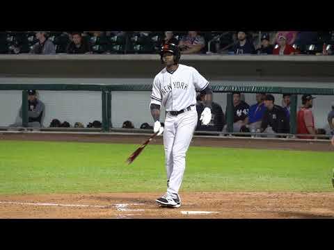 Estevan Florial, New York Yankees OF Prospect (2017 Arizona Fall League)