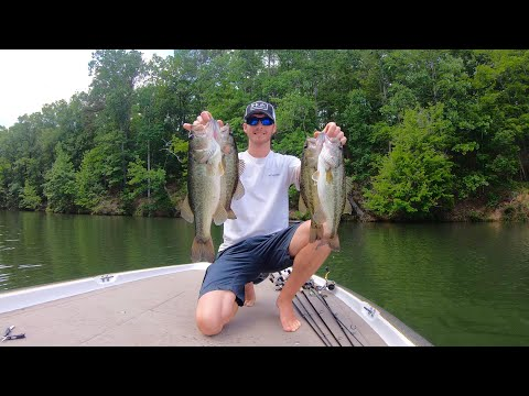 Post Spawn Bass Fishing Lake Oconee (finesse Fishing)