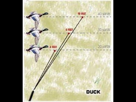 How to lead ducks, Shooting ducks 101