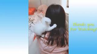 Cute Pets And Funny Animals Compilation #25   Pets Garden