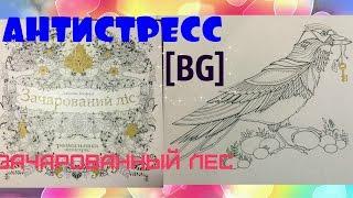 Зачарованный лес / Раскраска-антистресс / Птица /