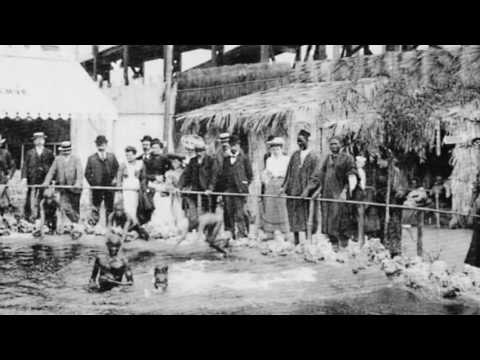 Dark Past - Human Zoo