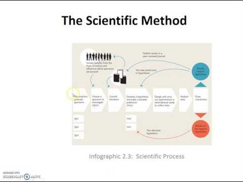 Science and Precautionary Principle