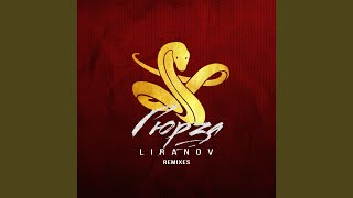 Гюрза (STI1 Remix)