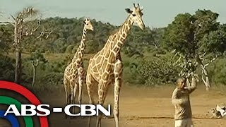 TV Patrol: 'Little Africa' ng Pilipinas