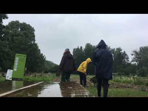 """""""Mulching in the Rain"""" - bei Regen auf dem Weltacker"""