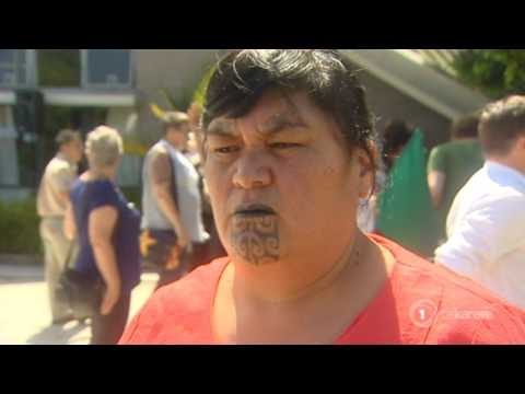 Māori Labour MPs ready to collaborate with Green candidates
