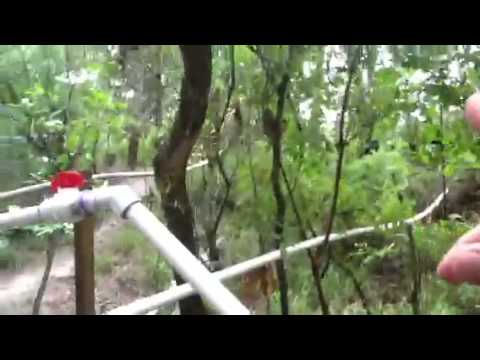 Off Grid gravity water system @Ferrell's Bluff
