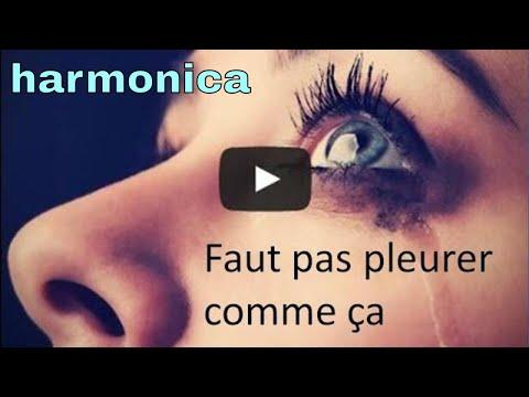 Daniel Guichard à l'harmonica : Faut pas pleurer comme ça (reprise)