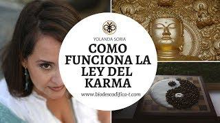 COMO FUNCIONA LA LEY DEL KARMA por Yolanda Soria
