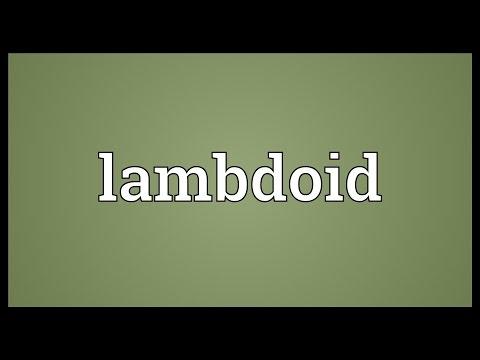 Lambdoid Meaning