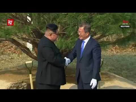 N. Korea's Kim, S. Korea's Moon plant tree for peace