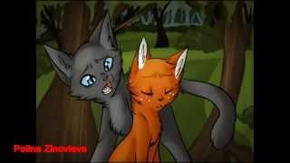 Коты Воители Уголёк и Белка Вдыхай сука мои слёзы
