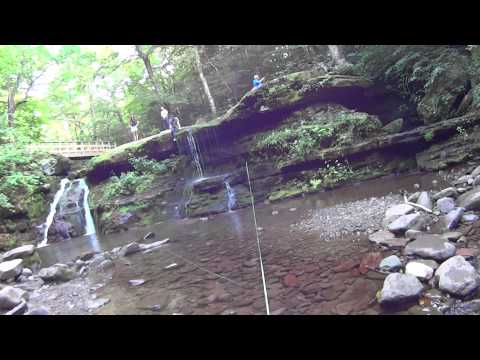 West Kill , Fly fishing in the Catskills