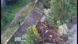 МЧС: В Сочи нашли тело 4-летней девочки, которую унесло течением реки